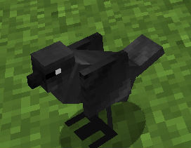 Птицы / Мод для Minecraft 1.5.2 / Mo Creatures